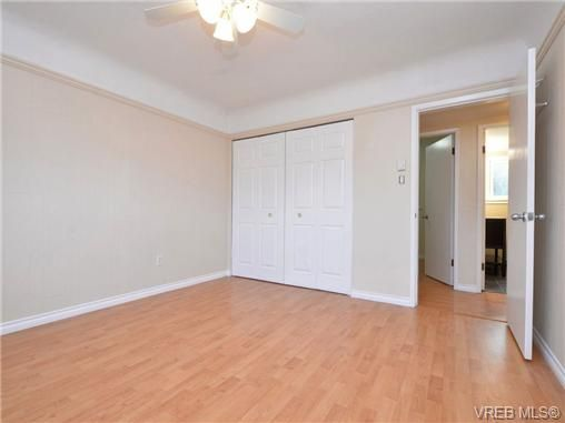Photo 11: Photos: 4091 Borden St in VICTORIA: SE Lake Hill House for sale (Saanich East)  : MLS®# 720229
