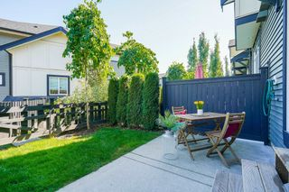 """Photo 31: 9 8570 204 Street in Langley: Willoughby Heights Townhouse for sale in """"WOODLAND PARK"""" : MLS®# R2614835"""