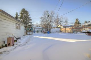 Photo 16: 49 Montrose Crescent NE in Calgary: Winston Heights/Mountview Detached for sale : MLS®# A1058784