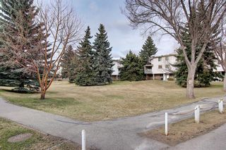 Photo 38: 140 3015 51 Street SW in Calgary: Glenbrook Row/Townhouse for sale : MLS®# A1092906