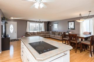 Photo 17: 101 Harrow Circle NW in Edmonton: Zone 35 House for sale : MLS®# E4231677