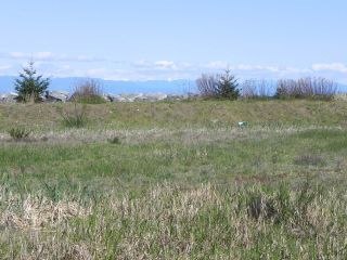 Photo 9: 8752 DRIFTWOOD ROAD in BLACK CREEK: CV Merville Black Creek Land for sale (Comox Valley)  : MLS®# 805655