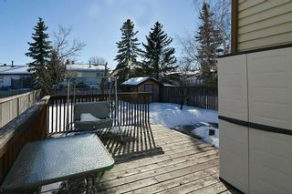 Photo 23: 139 CASTLEGLEN Road NE in Calgary: Castleridge House for sale : MLS®# C4170209