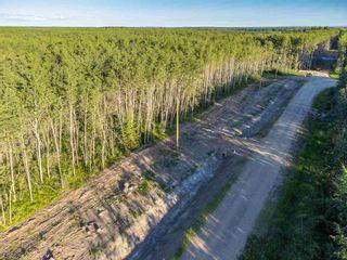 Photo 5: Rge Rd 423 Twp 623: Rural Bonnyville M.D. Rural Land/Vacant Lot for sale : MLS®# E4252823