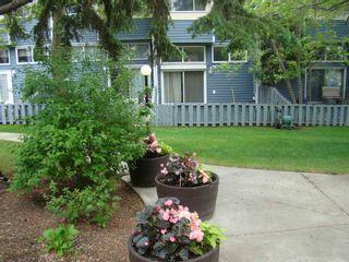Photo 4: 1023 MILLBOURNE Road E in Edmonton: Zone 29 Townhouse for sale : MLS®# E4248888
