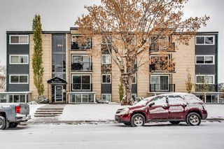 Photo 13: 202 2220 16a Street SW in Calgary: Bankview Apartment for sale : MLS®# A1043749