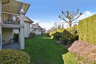 "Photo 32: 5 32777 CHILCOTIN Drive in Abbotsford: Central Abbotsford Townhouse for sale in ""CARTIER HEIGHTS"" : MLS®# R2572814"