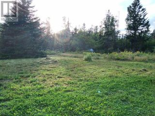 Photo 10: 555 Queens RD in Sackville: Vacant Land for sale : MLS®# M133180