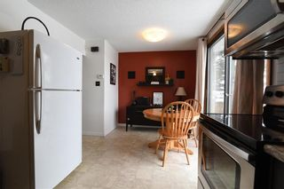 Photo 13: 86 Le Maire Street in Winnipeg: St Norbert Residential for sale (1Q)  : MLS®# 202101670