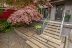 Main Photo: 1129 KINLOCH Lane in North Vancouver: Deep Cove House for sale : MLS®# R2580539