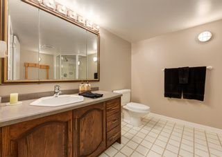 Photo 41: 96 Willow Park Green SE in Calgary: Willow Park Detached for sale : MLS®# A1125591