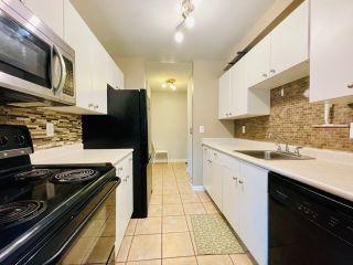 Photo 17: 110 10838 108 Street in Edmonton: Zone 08 Condo for sale : MLS®# E4231008