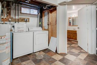 Photo 25: 19 Templemont Drive NE in Calgary: Temple Semi Detached for sale : MLS®# A1082358