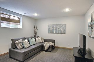 Photo 26: 127 Chapman Circle SE in Calgary: Chaparral Detached for sale : MLS®# A1110605