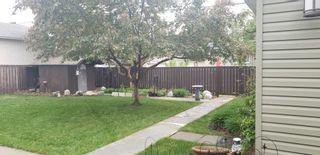 Photo 6: 15929 95 Avenue in Edmonton: Zone 22 House for sale : MLS®# E4249087