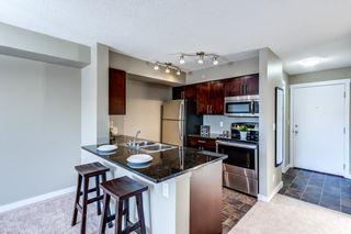 Photo 14: 406 3211 JAMES MOWATT Trail in Edmonton: Zone 55 Condo for sale : MLS®# E4248053