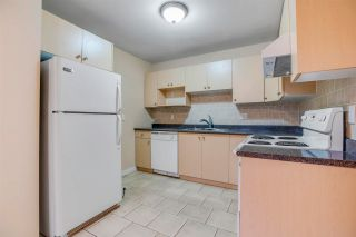 Photo 24: 5872 WALES Street in Vancouver: Killarney VE House for sale (Vancouver East)  : MLS®# R2572865