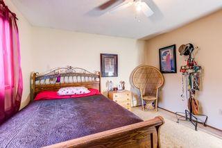 Photo 17: 2028 49A Street in Edmonton: Zone 29 House for sale : MLS®# E4250386