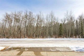 Photo 10: 4519 DONSDALE Drive in Edmonton: Zone 20 Vacant Lot for sale : MLS®# E4227514