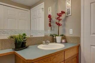 Photo 17: 208 Mt Selkirk Close SE in Calgary: McKenzie Lake Detached for sale : MLS®# A1104608