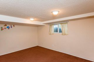 Photo 20: 48 Whitworth Way NE in Calgary: Whitehorn Detached for sale : MLS®# A1147094