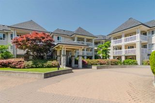"""Photo 18: 239 22020 49 Avenue in Langley: Murrayville Condo for sale in """"MURRAY GREEN"""" : MLS®# R2373423"""