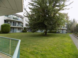"Photo 15: 111 1755 SALTON Road in Abbotsford: Central Abbotsford Condo for sale in ""The Gateway"" : MLS®# R2093311"