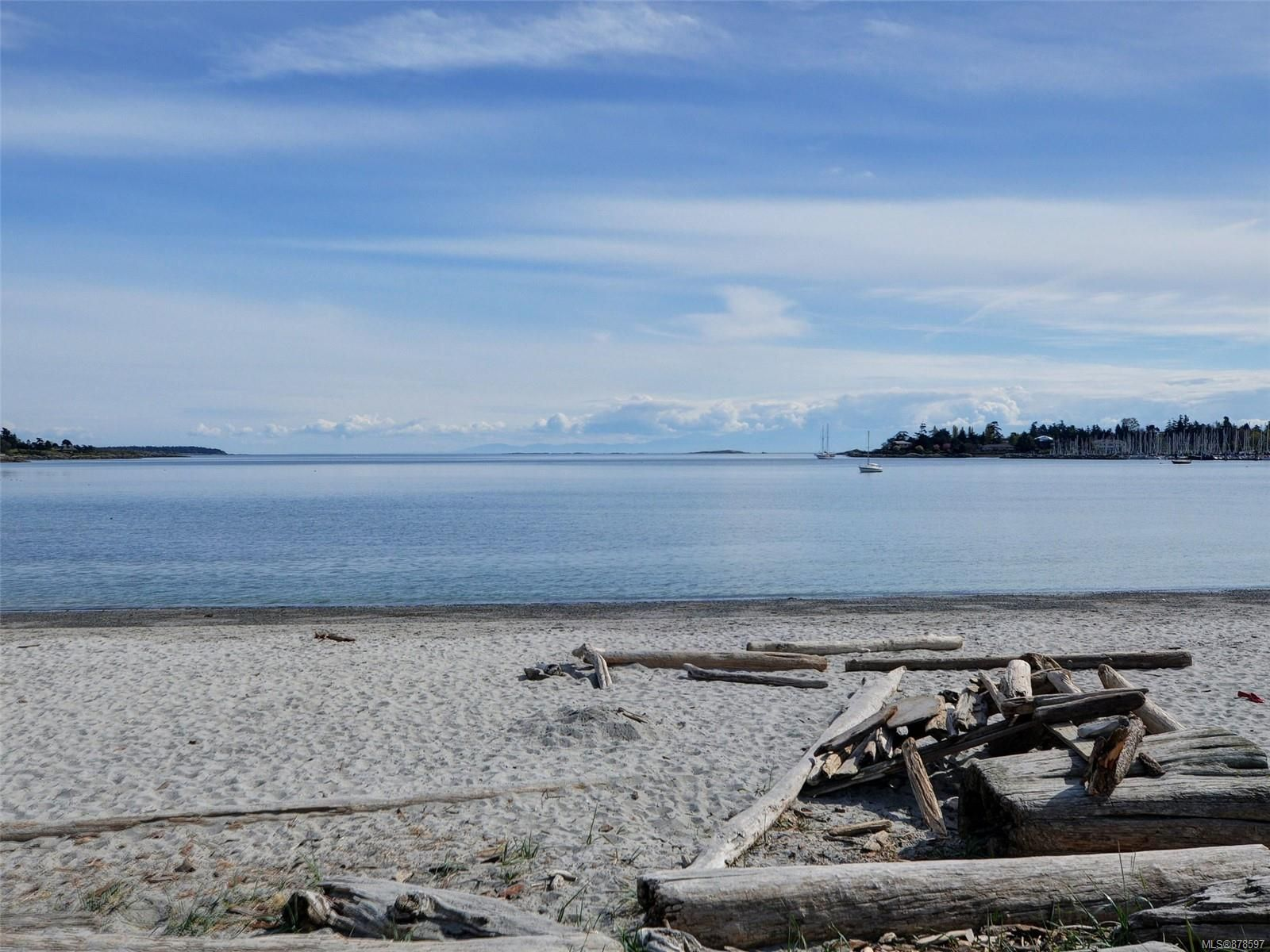 This is the Incredible Gyro Park Beach on Cadboro Bay--steps from this property.