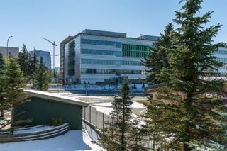 Photo 12: 215 3111 34 Avenue NW in Calgary: Varsity Apartment for sale : MLS®# A1041568