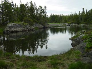 Photo 25: 0 Moshers Island Road in LaHave River: 405-Lunenburg County Vacant Land for sale (South Shore)  : MLS®# 202111805