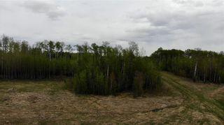 Photo 9: Viewmar Drive: Rural Ponoka County Land for sale : MLS®# C4288523