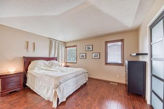 Photo 23: 151 Edgebrook Close NW in Calgary: Edgemont Detached for sale : MLS®# A1131174