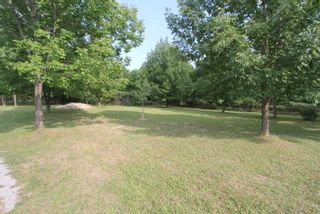 Photo 6: 1564 Prospect Road in Kawartha Lakes: Rural Eldon Property for sale : MLS®# X5363567