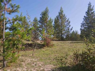 Photo 5: 20035 CARIBOO Highway: Buckhorn House for sale (PG Rural South (Zone 78))  : MLS®# R2499892