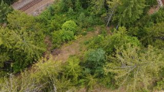 Photo 6: 8655 PROCTER EAST ROAD in Procter: Vacant Land for sale : MLS®# 2460291