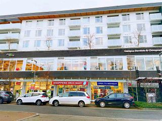 Photo 34: 802 3533 ROSS Drive in Vancouver: University VW Condo for sale (Vancouver West)  : MLS®# R2518338
