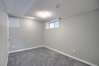 Photo 41: 26 Evanscrest Heights NW in Calgary: Evanston Detached for sale : MLS®# A1127719