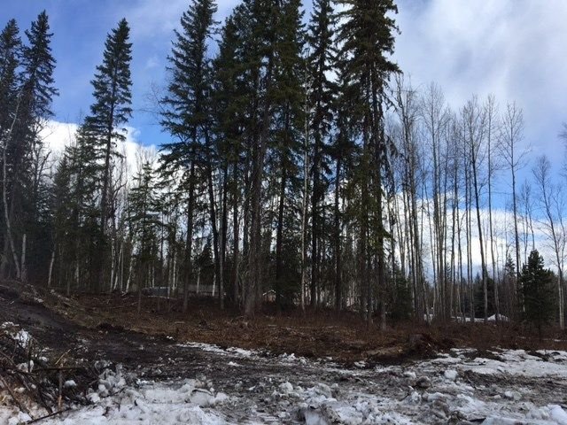 Photo 1: Photos: LOT 1 MARSH Road in Quesnel: Quesnel - Rural West Land for sale (Quesnel (Zone 28))  : MLS®# R2560822