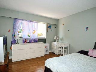 "Photo 15: 20480 THORNE Avenue in Maple Ridge: Southwest Maple Ridge House for sale in ""WEST MAPLE RIDGE"" : MLS®# V1132632"