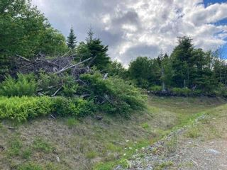 Photo 20: Lot 102 Point Road in Clam Bay: 35-Halifax County East Vacant Land for sale (Halifax-Dartmouth)  : MLS®# 202116103