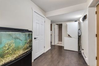 Photo 21: 3811 WELLINGTON Street in Port Coquitlam: Oxford Heights House for sale : MLS®# R2562811