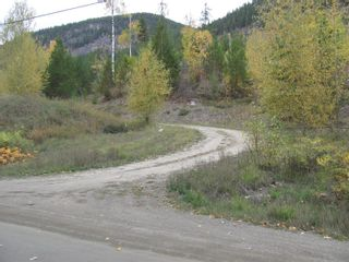 Photo 4: 80 Acres Creighton Valley Road, in Lumby: Vacant Land for sale : MLS®# 10239894