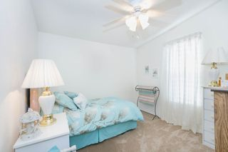 Photo 11: FALLBROOK Manufactured Home for sale : 2 bedrooms : 3909 Reche Road #177