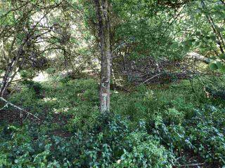 Photo 11: 421 FERNHILL Road: Mayne Island Land for sale (Islands-Van. & Gulf)  : MLS®# R2470182