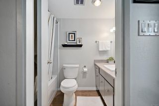 Photo 26: 1 1331 Johnson St in : Vi Fernwood Condo for sale (Victoria)  : MLS®# 862010