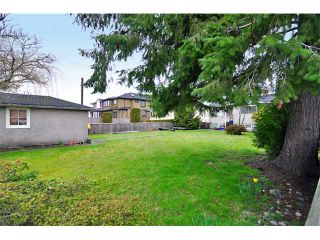 Photo 10: 3108 W 16TH Avenue in Vancouver: Arbutus House for sale (Vancouver West)  : MLS®# V884638