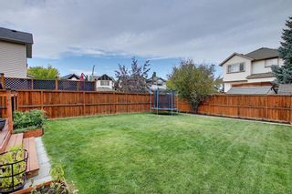 Photo 42: 10 CRANWELL Link SE in Calgary: Cranston Detached for sale : MLS®# A1036167