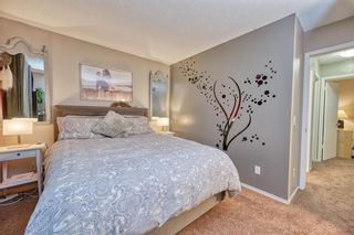 Photo 15: 39 Erin Green Way SE in Calgary: Erin Woods Detached for sale : MLS®# A1118796