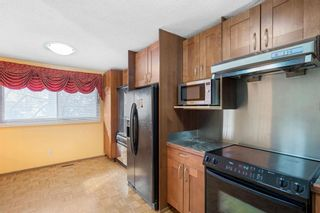 Photo 34: 128 Dovertree Place SE in Calgary: Dover Semi Detached for sale : MLS®# A1075565