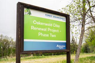 Photo 43: 530 Oakenwald Avenue in Winnipeg: Wildwood Residential for sale (1J)  : MLS®# 202112079